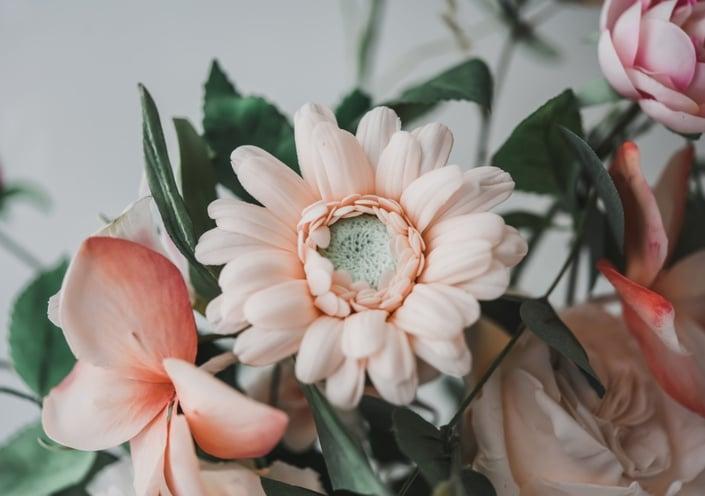 Modern Sugar Flowers – Volume 3